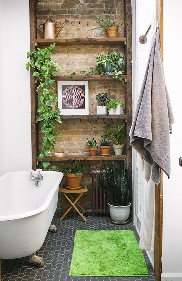 foto-baño-plantas